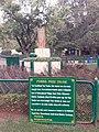 Fossil Tree Trunk @ Botanical Garden, Ooty.jpg