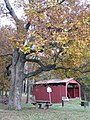 Fowlersville Covered Bridge 16.JPG