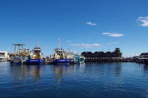 Fremantle Fishing Boat Harbour - Image: Fremantle fishing boat harbour gnangarra 1
