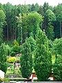 Gardens - panoramio (5).jpg
