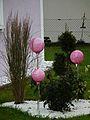 Gartenkugeln in rosa Vorgarten.JPG