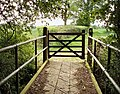 Gate in Hollyhill Wood - geograph.org.uk - 443694.jpg