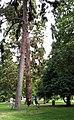 Geneve parc Bastions 2011-08-05 13 16 12 PICT0112.JPG