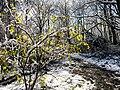 Georgia snow IMG 4756 (24082341067).jpg