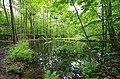 Geschützter Landschaftsbestandteil Schubertgrund in Sachsen. 2H1A1259WI.jpg