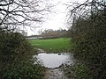 Gigantic puddle near the pipeline - geograph.org.uk - 630594.jpg