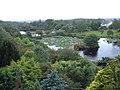 Glenwhan Gardens, Dunragit, - Dumfriesshire - geograph.org.uk - 74780.jpg