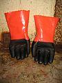 Gloves (435632551).jpg