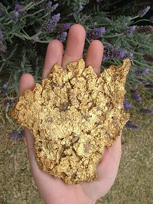 Gladstone, Queensland - The Providence Nugget, found in Gladstone in 2004 with a metal detector
