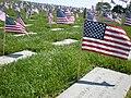 Golden Gate National Cemetery mound Memorial Day 2008 graves 2.JPG