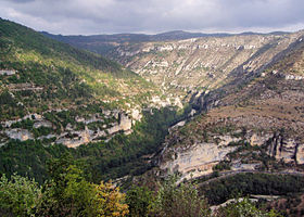 Gorges Du Tarn, Cevennes National Park, France.jpg