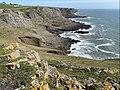 Gower coast (geograph 6786246).jpg
