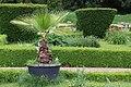 "Gradina Botanica ""Vasile Fati"" (4653976668).jpg"