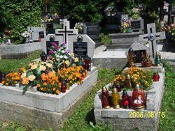 http://upload.wikimedia.org/wikipedia/commons/thumb/d/d5/Graves_in_Poland_w_znicze.JPG/250px-Graves_in_Poland_w_znicze.JPG