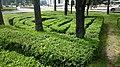 Green Plants that the municipality has shaped - panoramio.jpg