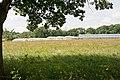 Greenhouses at Woodlea Nursery, Bishop's Waltham - geograph.org.uk - 842212.jpg