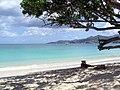 Grenada Grand Anse - panoramio.jpg