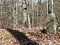 Grenzstein von 1787 am HW 10, Der Weg führt von Pforzheim über Besigheim und Backnang nach Lorch und hier über die waldreichen und einsamen Keuperhöhen des Stromberges. - panoramio.jpg