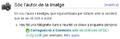 Guia Viquipèdia. Carregar imatges. Ajuda 2.PNG
