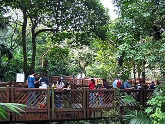 Hong Kong Park - Inside the aviary