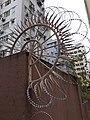 HK SW 上環 Sheung Wan 普義街 Po Yee Street near 磅巷 Pound Lane 普慶坊 Po Hing Fong near 卜公花園 Blake Garden February 2020 SS2 02.jpg