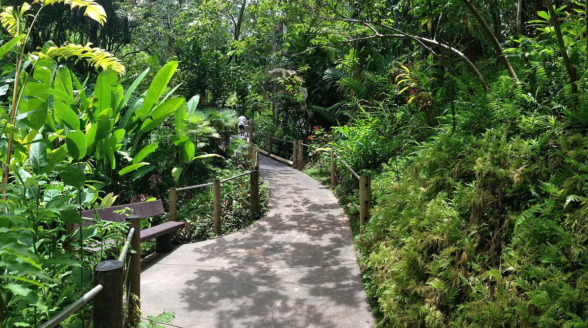 Rainforest Retreat Big Island
