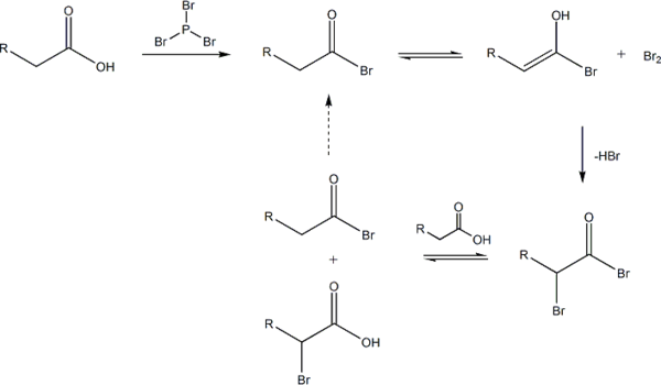 Hell-Volhard-Zelinsky reaction mechanism overall