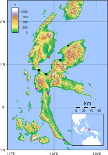 alt=Description de l'image Habroptila wallacii halmahera map.png.