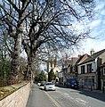 Hallgate - geograph.org.uk - 761446.jpg