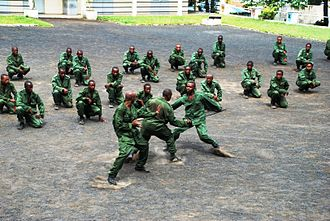 Military of the Comoros - Comoran Defense Force soldiers demonstrate hand-to-hand combat skills