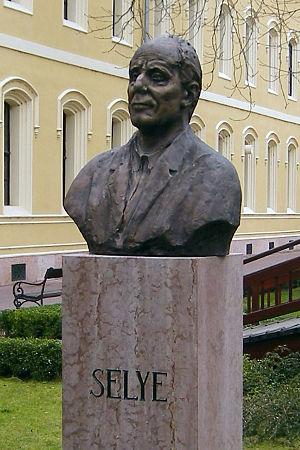 Psychoneuroimmunology - Bust of Hans Selye at Selye János University, Komárno, Slovakia