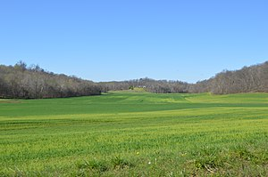 Harrison Township, Spencer County, Indiana - Fields east of Fulda