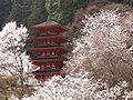 Hase-dera five Storeyed Pagoda and cherry trees.jpg
