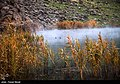 Hashilan Wetland 13951113 15.jpg