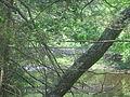 Hauser footbridge 032.JPG