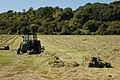 Haymaking at Eldersfield - geograph.org.uk - 545260.jpg