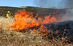 Heat is on for air station wildfire prevention and training 130515-M-OB827-045.jpg