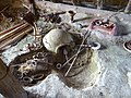 Heldenberg-DSC05243-Neolithisches Dorf.JPG