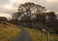 Hepste-Fawr Farm - geograph.org.uk - 602413.jpg