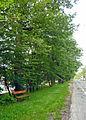 Hermesstrasse 1130 Nr399.jpg