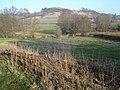 Hill east of Lingen - geograph.org.uk - 905472.jpg