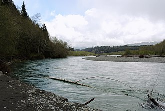 Hoh River - The Hoh river in spring