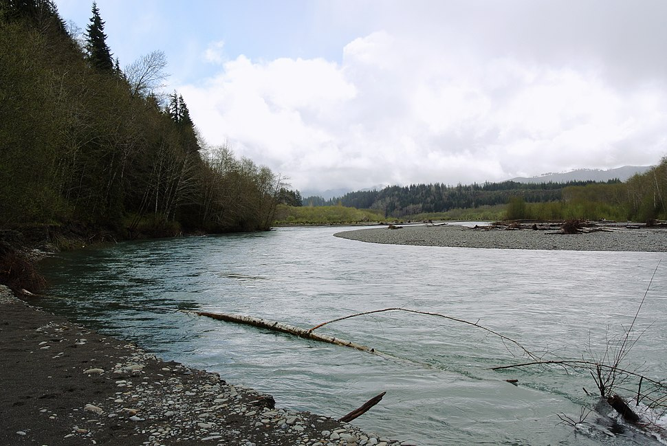 Hoh river in spring