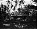Hon. C.R. Bishop's Grass House, Waikiki (2), photograph by Brother Bertram.jpg