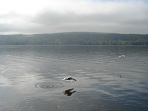 Honeoye Lake