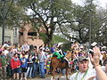 Horse with Frog Carrollton Parade.jpg