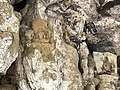 Hparpya-Cave-5.jpg