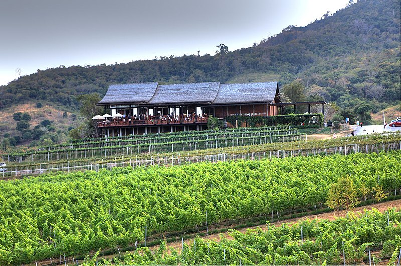 File:Hua Hin Hills Monsoon Valley Vineyard - panoramio - josef knecht.jpg