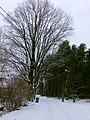 Imanta, Kurzeme District, Riga, Latvia - panoramio (10).jpg