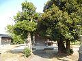 Inazumi, Imizu, Toyama Prefecture 939-0301, Japan - panoramio - kiwa dokokano (2).jpg